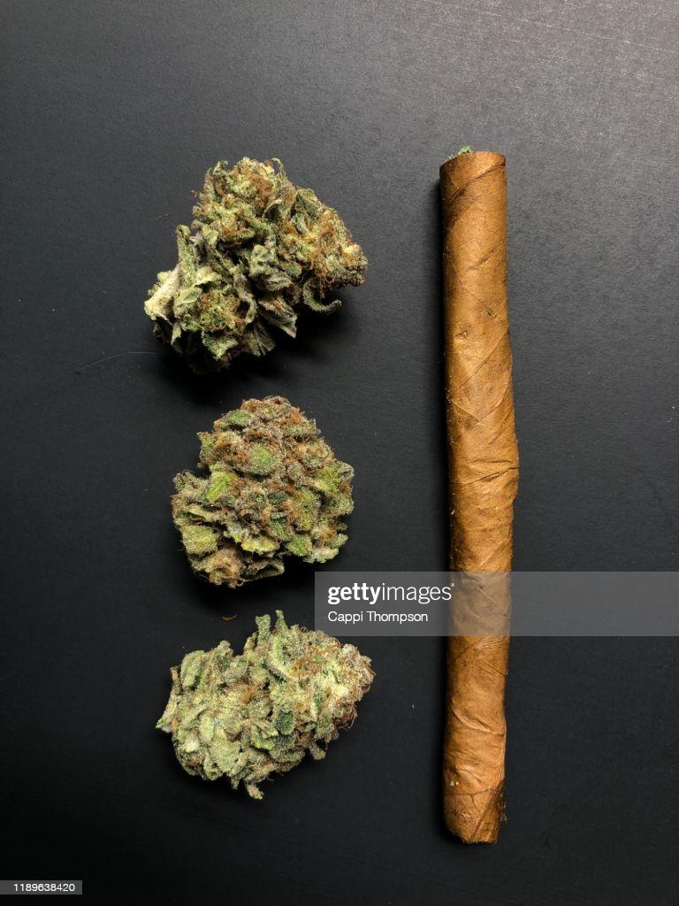 Hemp/Marijuana